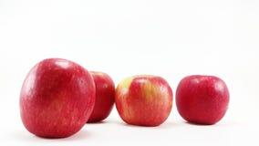 4 manzanas en el fondo blanco con el foco selectivo Fotografía de archivo libre de regalías