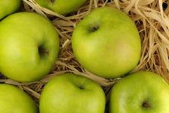Manzanas en el heno Fotografía de archivo libre de regalías