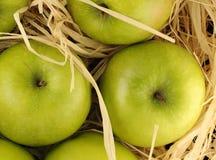 Manzanas en el heno Fotos de archivo