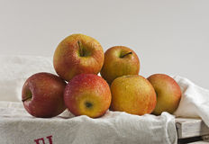Manzanas en el vector de cocina viejo Fotos de archivo libres de regalías