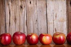 Manzanas en fila Fotos de archivo