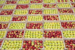 Manzanas en rectángulos de madera Fotos de archivo