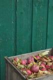 Manzanas en retrato del embalaje Imagen de archivo libre de regalías