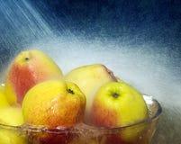 Manzanas en tazón de fuente con gotas de lluvia Imagen de archivo libre de regalías