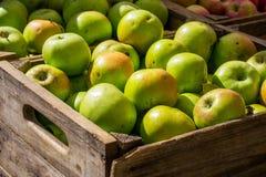 Manzanas en un cajón Fotos de archivo