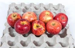 Manzanas en un cierre de la caja del huevo para arriba Fotos de archivo libres de regalías