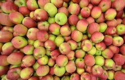 Manzanas en un compartimiento del almacenamiento Foto de archivo