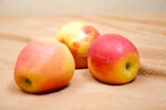 Manzanas en un fondo beige Foto de archivo libre de regalías