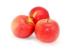 Manzanas en un fondo blanco Fotos de archivo