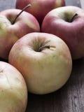 Manzanas en un vector de madera. Fotos de archivo libres de regalías