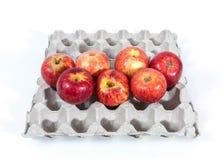 Manzanas en una caja del huevo Fotografía de archivo