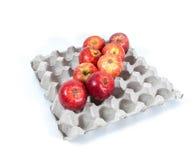 Manzanas en una caja del huevo Imágenes de archivo libres de regalías