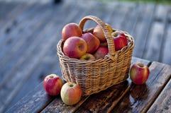 Manzanas en una cesta Fotos de archivo libres de regalías