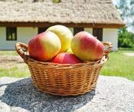 Manzanas en una cesta Imagen de archivo libre de regalías