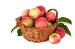 Manzanas en una cesta en un fondo blanco Fotografía de archivo
