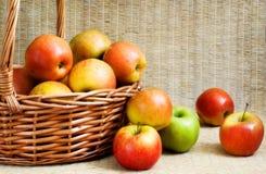 Manzanas en una cesta, foco suave Fotos de archivo