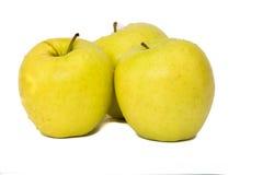 Manzanas encendido aisladas en un fondo blanco Imagen de archivo libre de regalías