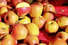 Manzanas enteras Fotos de archivo libres de regalías