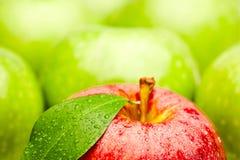 Manzanas frescas Foto de archivo libre de regalías