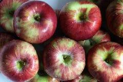 Manzanas frescas fotografía de archivo