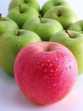 Manzanas frescas en un fondo blanco Fotografía de archivo