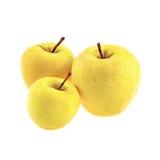 Manzanas 'golden delicious' aisladas en el fondo blanco Imagenes de archivo