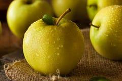 Manzanas 'golden delicious' orgánicas crudas Imagenes de archivo