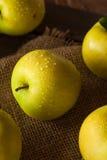 Manzanas 'golden delicious' orgánicas crudas Foto de archivo libre de regalías