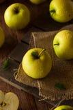 Manzanas 'golden delicious' orgánicas crudas Imagen de archivo