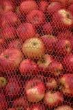 Manzanas industriales Imágenes de archivo libres de regalías