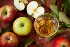 Manzanas, jugo y rama de árbol con las hojas verdes Fotografía de archivo libre de regalías