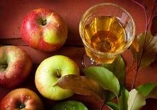 Manzanas, jugo y rama de árbol con las hojas verdes Fotos de archivo