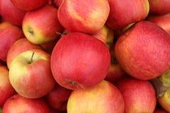 Manzanas jugosas, fragantes que se utilizarán para la empanada imagenes de archivo