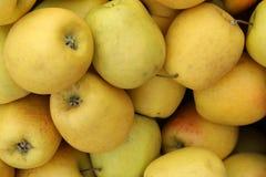 Manzanas jugosas, fragantes que se utilizarán para la empanada fotos de archivo libres de regalías