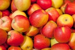 Manzanas jugosas quebradizas Fotos de archivo