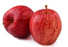 Manzanas maduras aisladas Imágenes de archivo libres de regalías