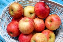 Manzanas maduras en la cesta de mimbre blanca Imágenes de archivo libres de regalías