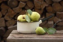 Manzanas maduras frescas en el plato Manzanas de la cosecha en huerta del verano Fruta y verdura orgánica Foto de archivo libre de regalías