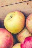 Manzanas manuales a dedo Fotos de archivo libres de regalías