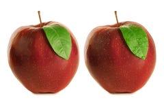 Manzanas mojadas y secas Fotografía de archivo