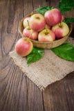 Manzanas orgánicas en cesta en hierba del verano Manzanas frescas en naturaleza Foto de archivo