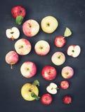 Manzanas orgánicas en pizarra Manzanas amarillas y verdes rojas frescas con Fotografía de archivo libre de regalías