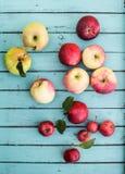Manzanas orgánicas frescas en el fondo de madera rústico visto de abo Fotos de archivo