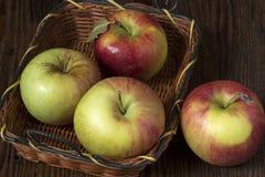 Manzanas org?nicas en embalaje foto de archivo