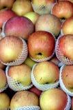 Manzanas para la venta Fotos de archivo libres de regalías