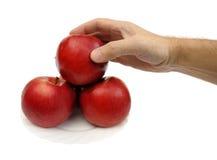 Manzanas rojas, aisladas Imágenes de archivo libres de regalías