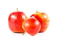 Manzanas rojas aisladas en la verdura blanca del fondo y las frutas helthy de la comida Foto de archivo