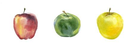 Manzanas rojas, amarillas y verdes de la acuarela Fotografía de archivo