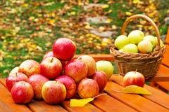Manzanas rojas con la cesta Fotografía de archivo libre de regalías