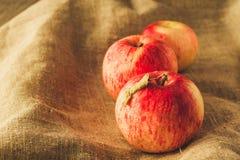 Manzanas rojas del árbol en el paño de lino filtrado Imagenes de archivo